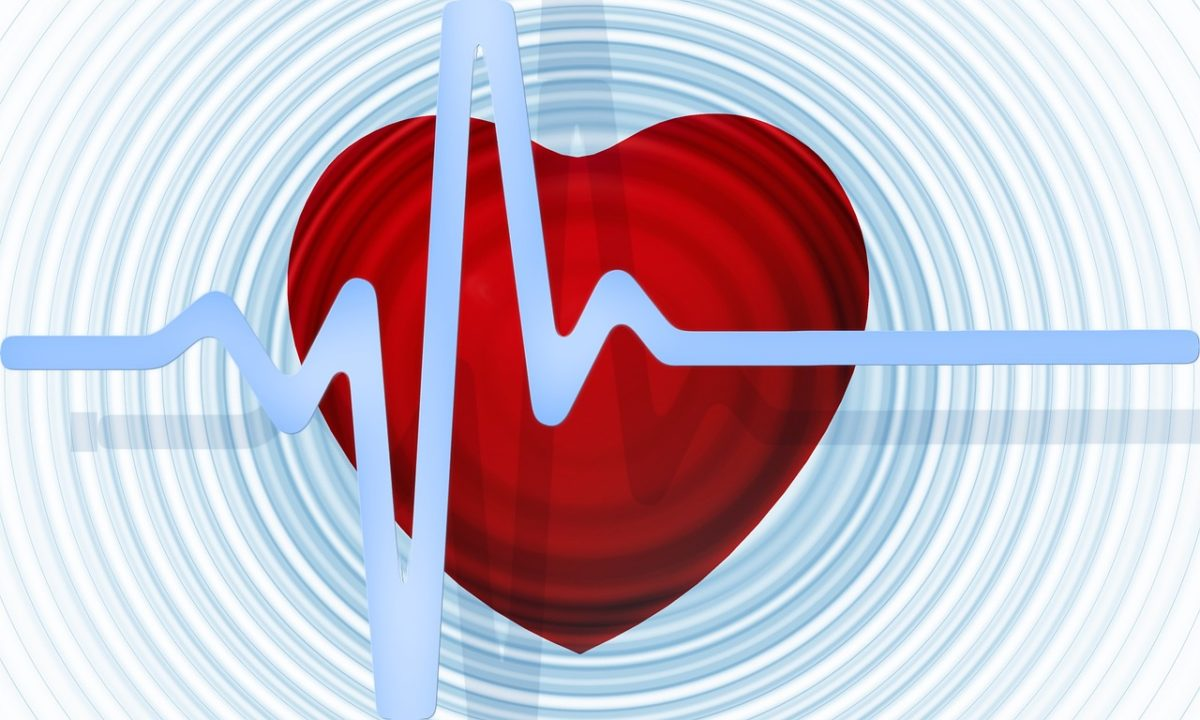 Krvni sudovi kritična zona za Vodolije, Lav strahuje od srčanih oboljenja