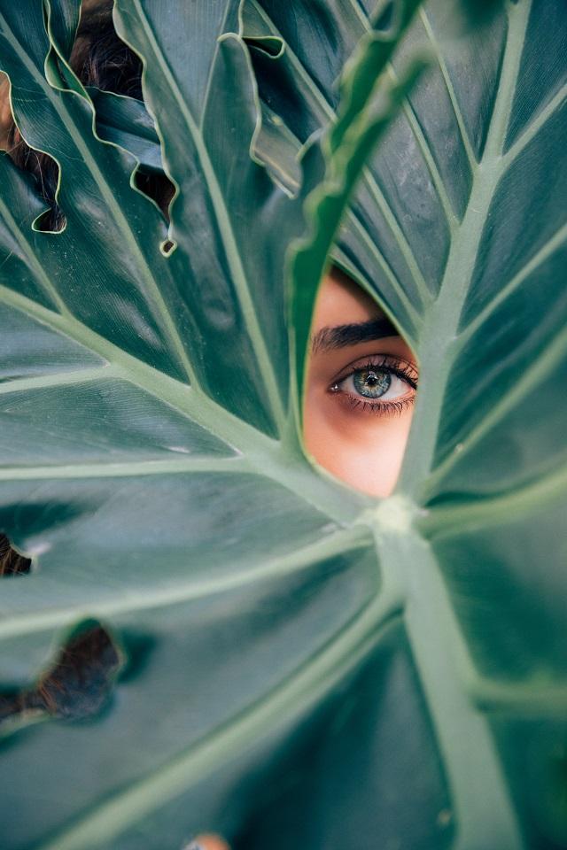 8 prirodnih melema za rast i negu obrva