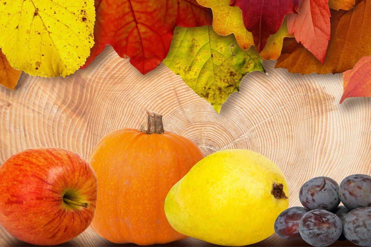 Kuvajte i mesite sa čarobnim plodovima jeseni