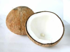 coconut-1327503