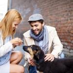 Psi mogu da pročitaju naše emocije