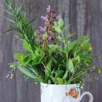 Biljke pomažu kad hormoni divljaju