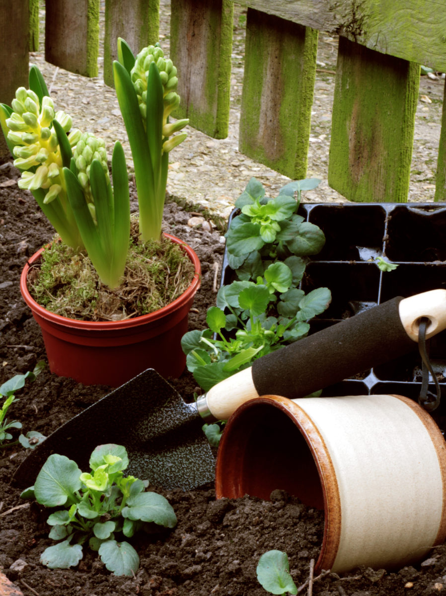 Sajam hortikulture Beoplantfair: Sadite pametno