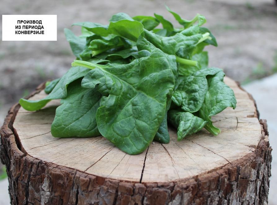 Zdrava i organska hrana direktno sa njive do trpeze
