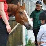 Hipoterapija: Konji koji leče ljude