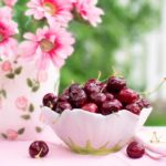 Čaj od peteljki trešanja- lek za reumu, bubrege, bolesti srca…