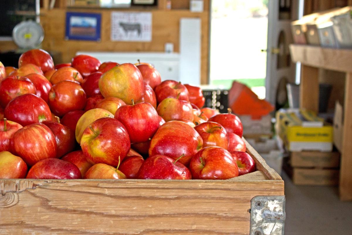 Recept za organsko jabukovo sirće: Koristite ga za lepotu i mršavljenje
