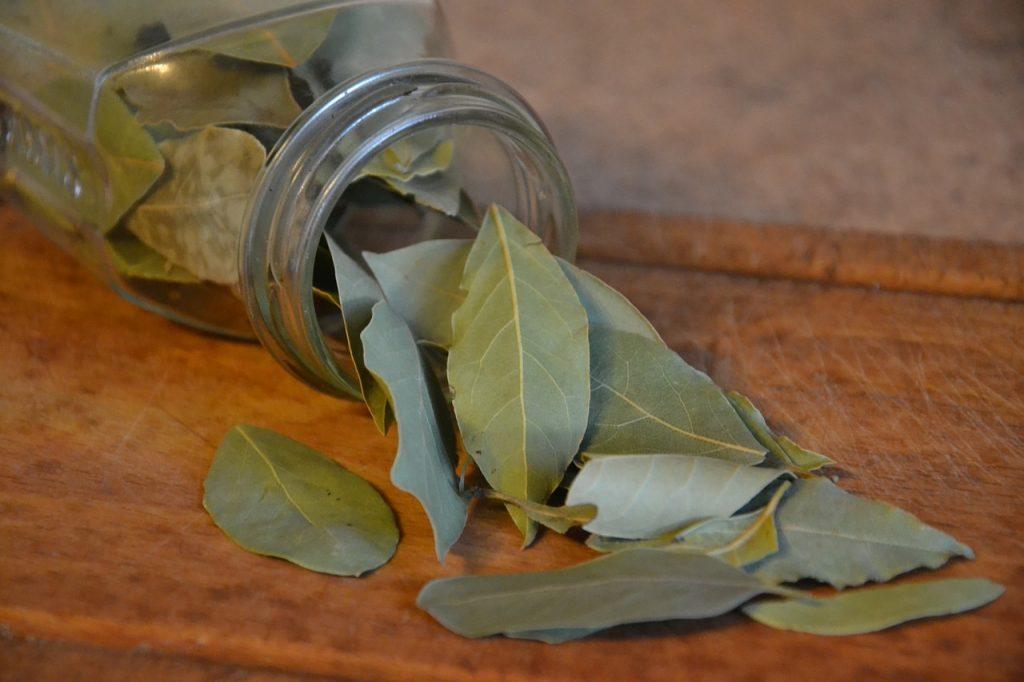 Čaj od lovora za jači imunitet