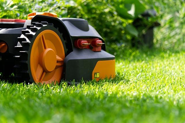 Savršen travnjak – stručnjaci savetuju posipanje začinom