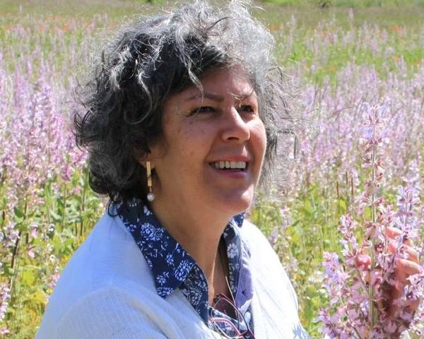 Aromaterapijom protiv trauma: nežno, neinvazivno oslobađanje negativnih emocija, boli i iskustava