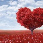 Emotivno varanje: Devet znakova koji otkrivaju prevaranta