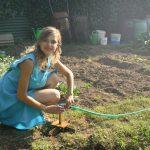 ALERGIJE STIŽU: Pretvorite vašu baštu u zonu bez POLENA