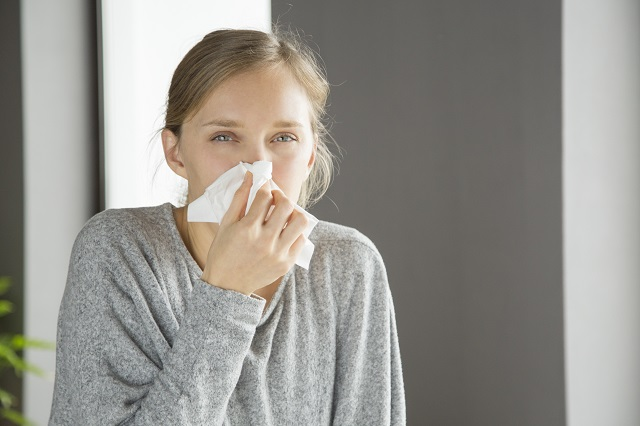 Ambrozija, najjači alergen
