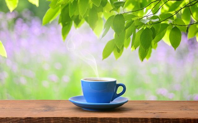 Kombuha, zdravlje i u limenci