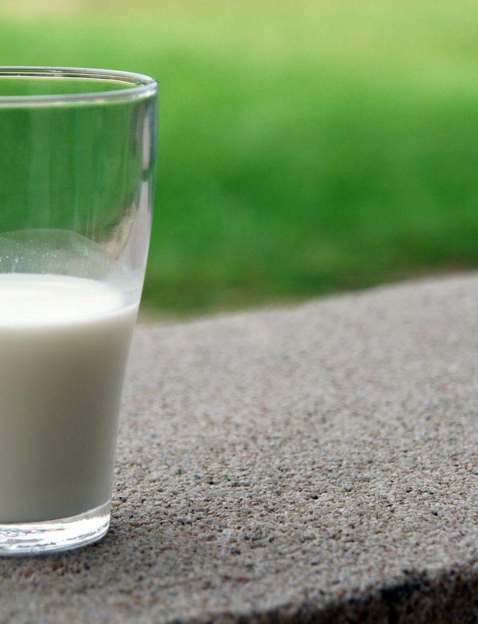 Probiotici, lek protiv korone?