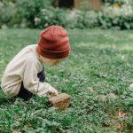 Zelenilo, važan faktor za jak IMUNITET i dobro zdravlje