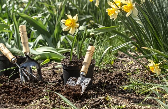 Doček proleća: 3 rituala za sreću