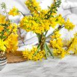 4 razloga zašto u kući uvek treba da imamo cveće