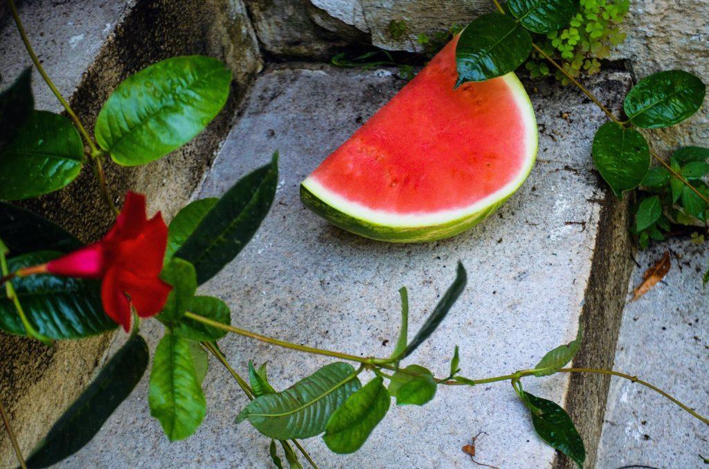 Lubenica je prirodna vitaminska infuzija